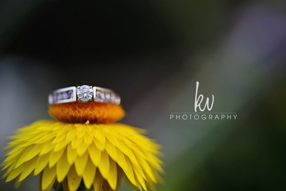 kv photography - engagement - orlando photographer ma4