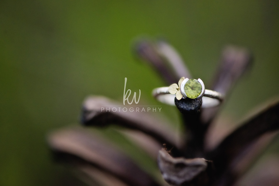 KV Photography - Engagement - Orlando Photographer - ja2