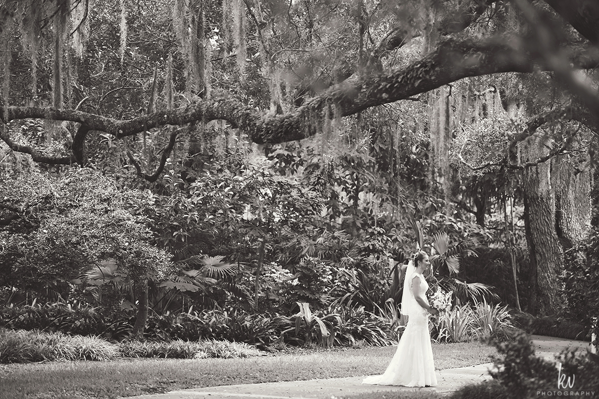 Leu Garden Orlando Wedding Photographer